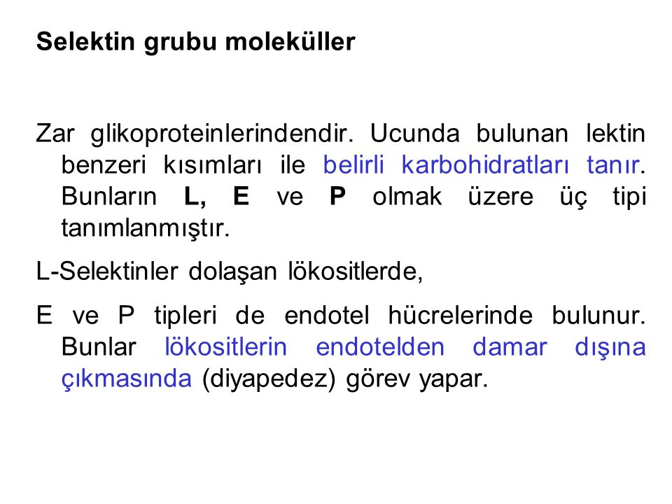 Selektin grubu moleküller