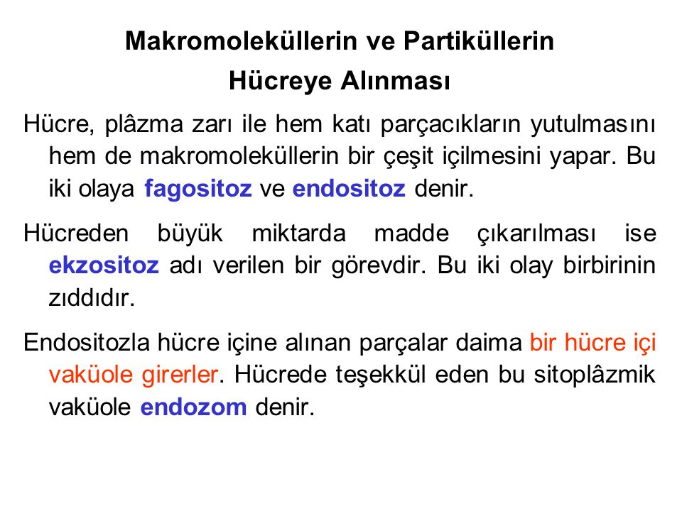 Makromoleküllerin ve Partiküllerin