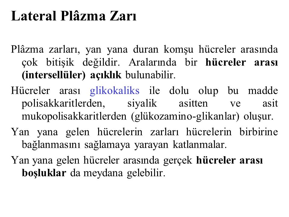 Lateral Plâzma Zarı