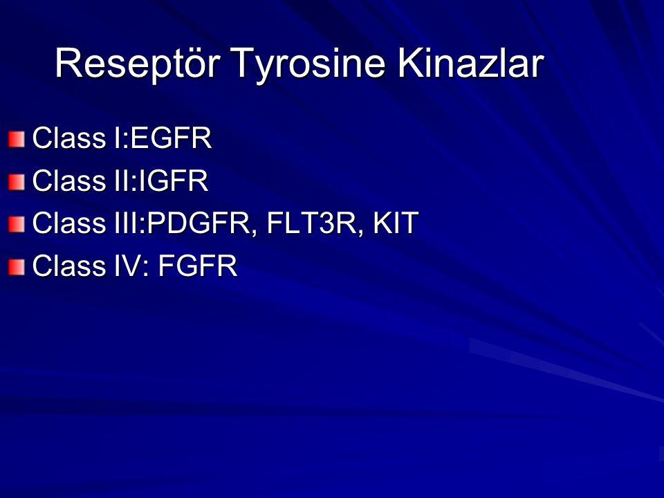 Reseptör Tyrosine Kinazlar