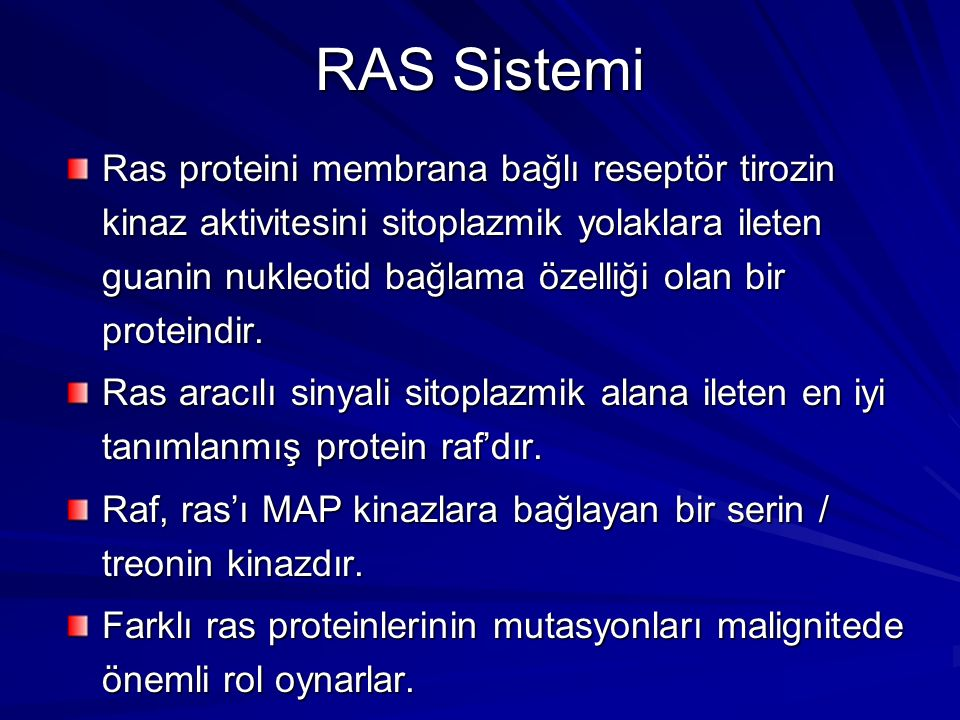 RAS Sistemi