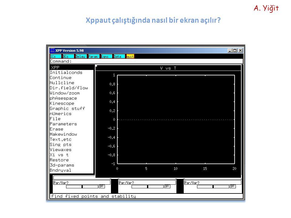 Xppaut çalıştığında nasıl bir ekran açılır