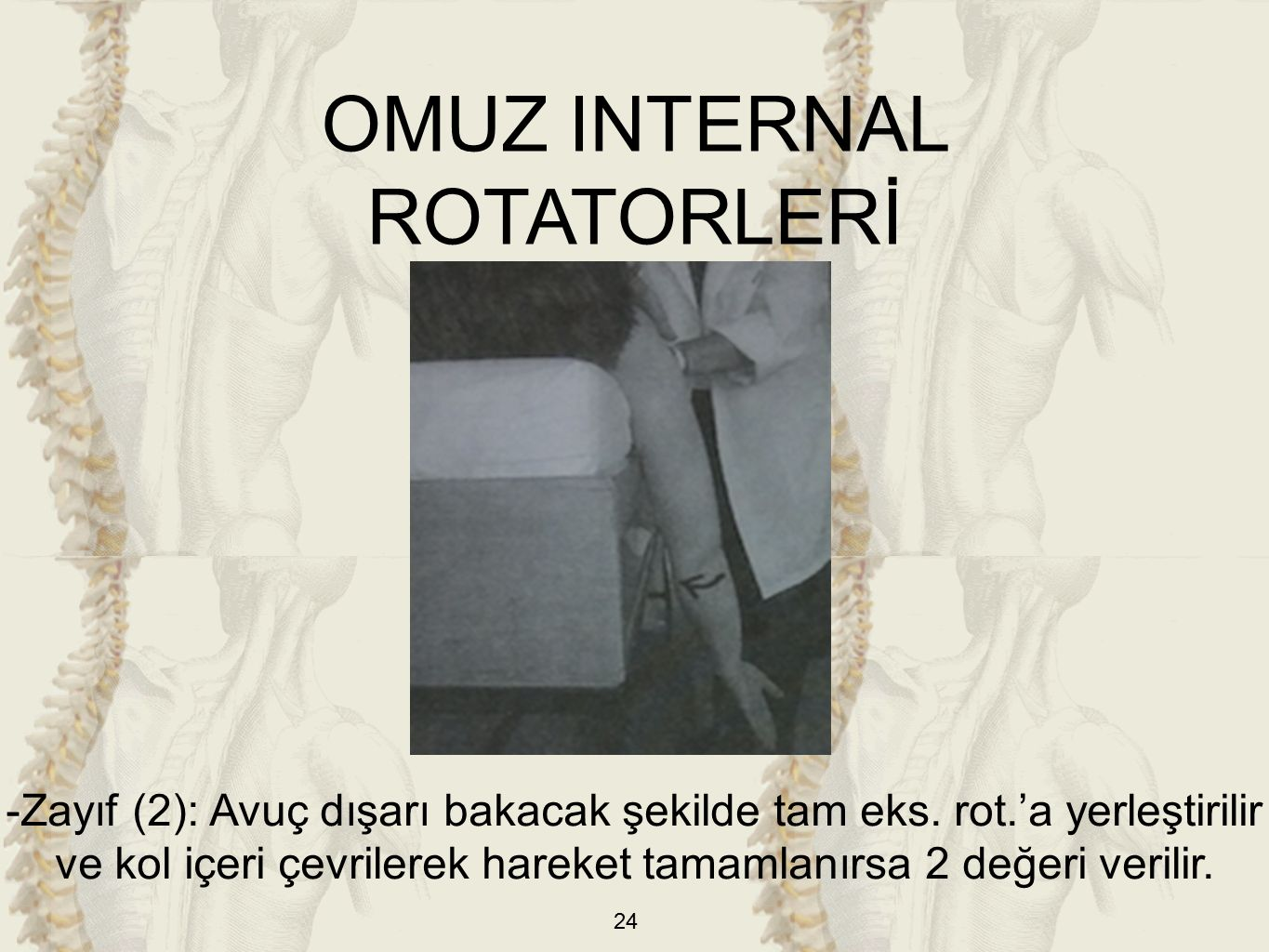 OMUZ INTERNAL ROTATORLERİ