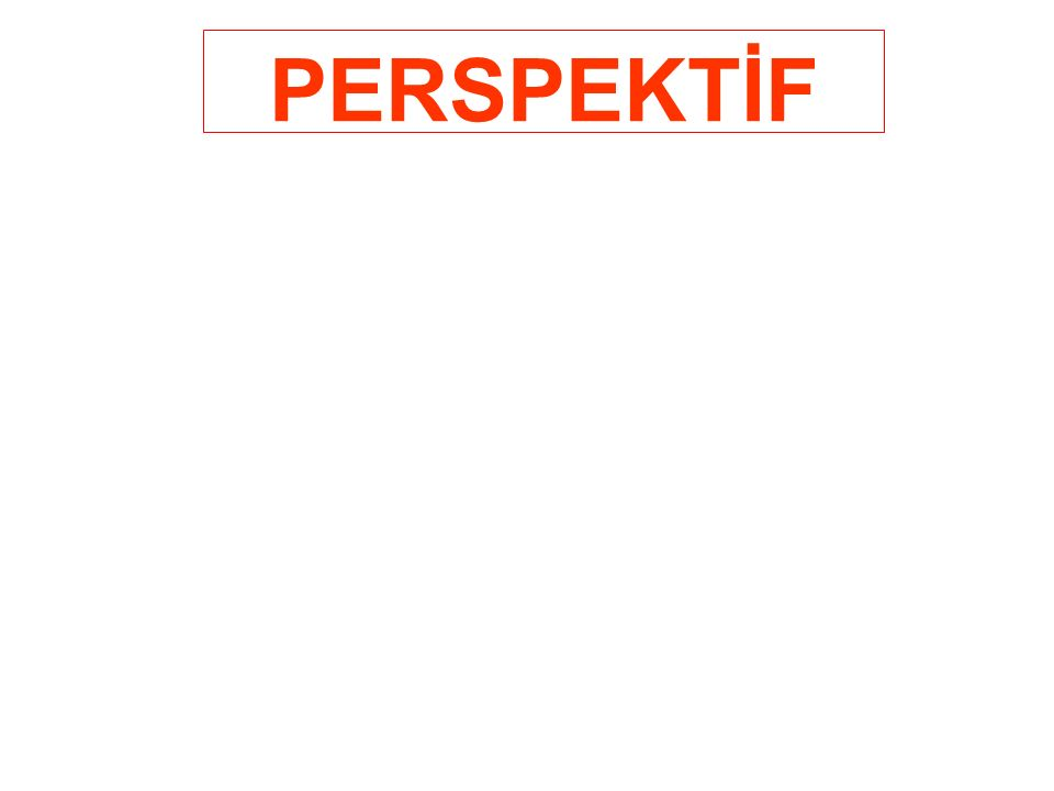 PERSPEKTİF