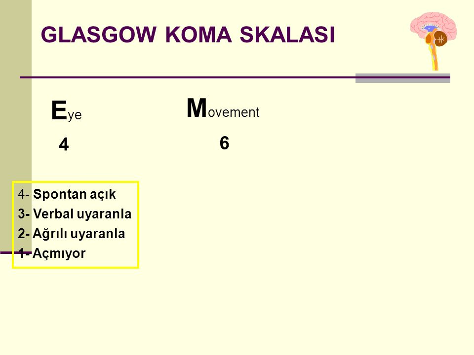 Movement Eye GLASGOW KOMA SKALASI 4 6 4- Spontan açık