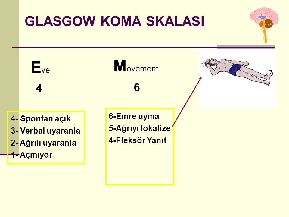 Movement Eye GLASGOW KOMA SKALASI 4 6 6-Emre uyma 4- Spontan açık