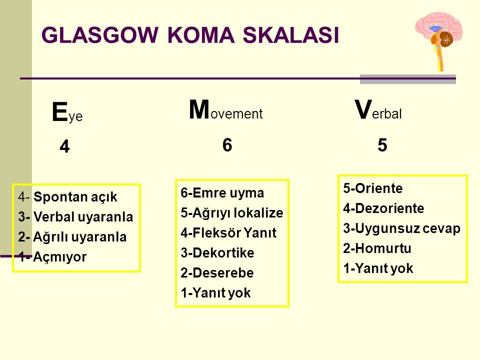 Eye Movement Verbal GLASGOW KOMA SKALASI 4 6 5 5-Oriente 6-Emre uyma