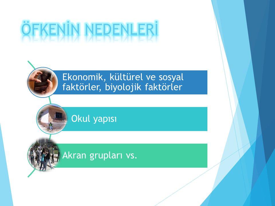 ÖFKENİN NEDENLERİ Ekonomik, kültürel ve sosyal faktörler, biyolojik faktörler.