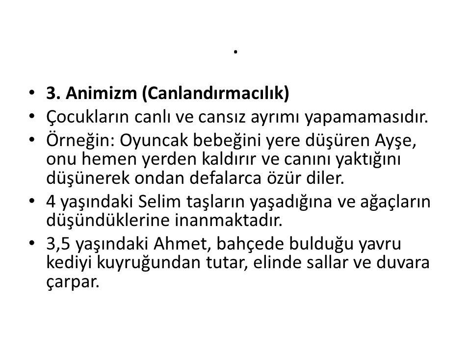 . 3. Animizm (Canlandırmacılık)