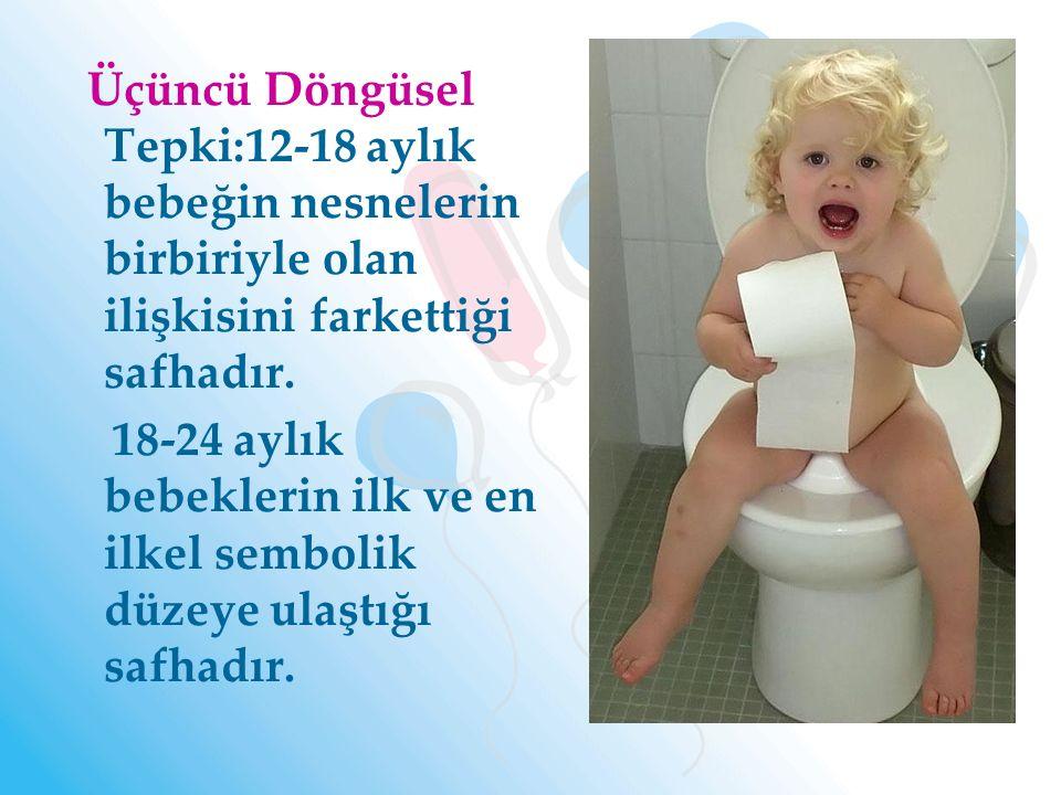 Üçüncü Döngüsel Tepki:12-18 aylık bebeğin nesnelerin birbiriyle olan ilişkisini farkettiği safhadır.