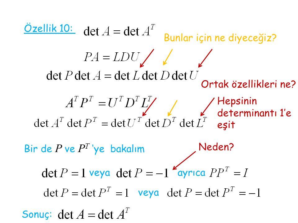 Özellik 10: Bunlar için ne diyeceğiz Ortak özellikleri ne Hepsinin determinantı 1'e eşit. Bir de P ve PT 'ye bakalım.
