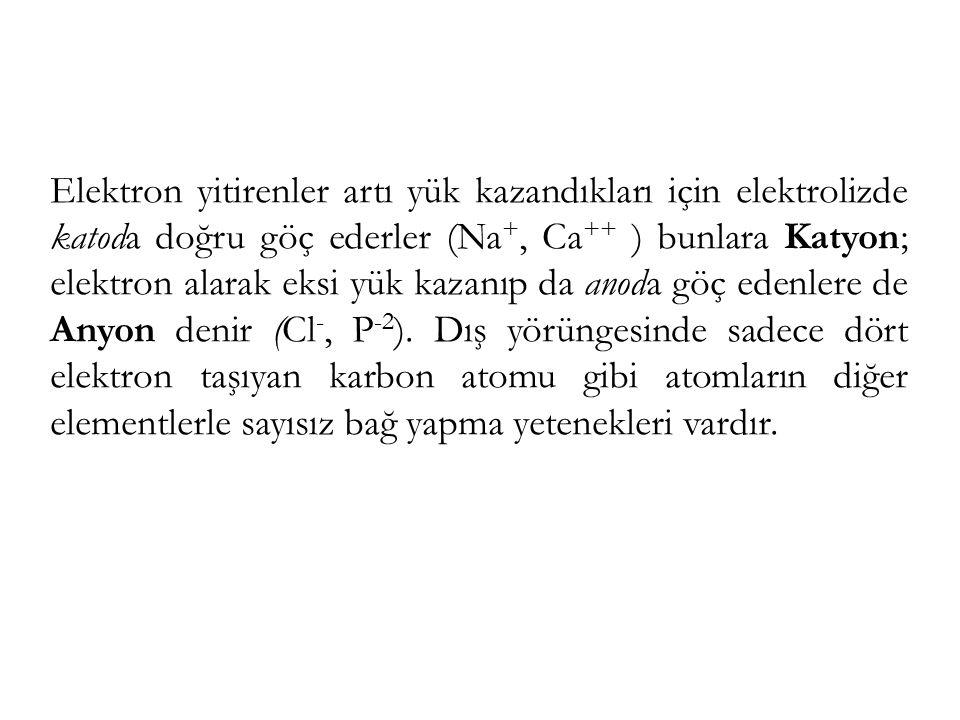 Elektron yitirenler artı yük kazandıkları için elektrolizde katoda doğru göç ederler (Na+, Ca++ ) bunlara Katyon; elektron alarak eksi yük kazanıp da anoda göç edenlere de Anyon denir (Cl-, P-2).