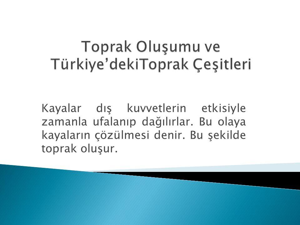 Toprak Oluşumu ve Türkiye'dekiToprak Çeşitleri