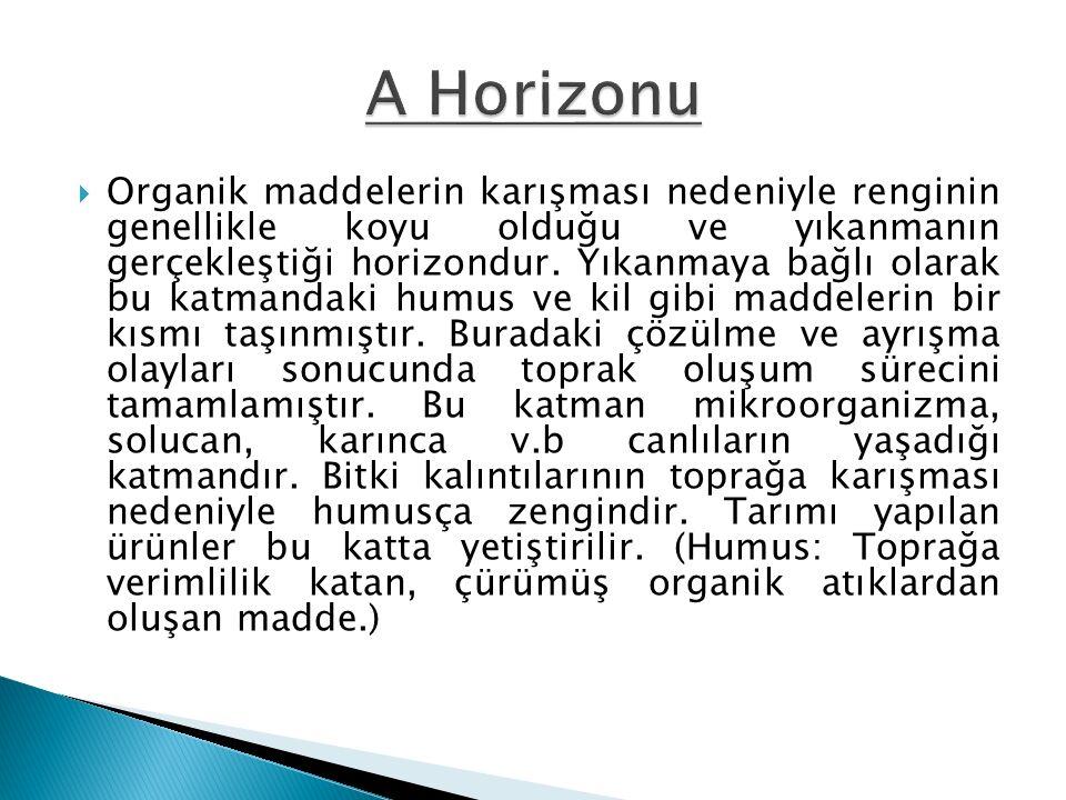 A Horizonu