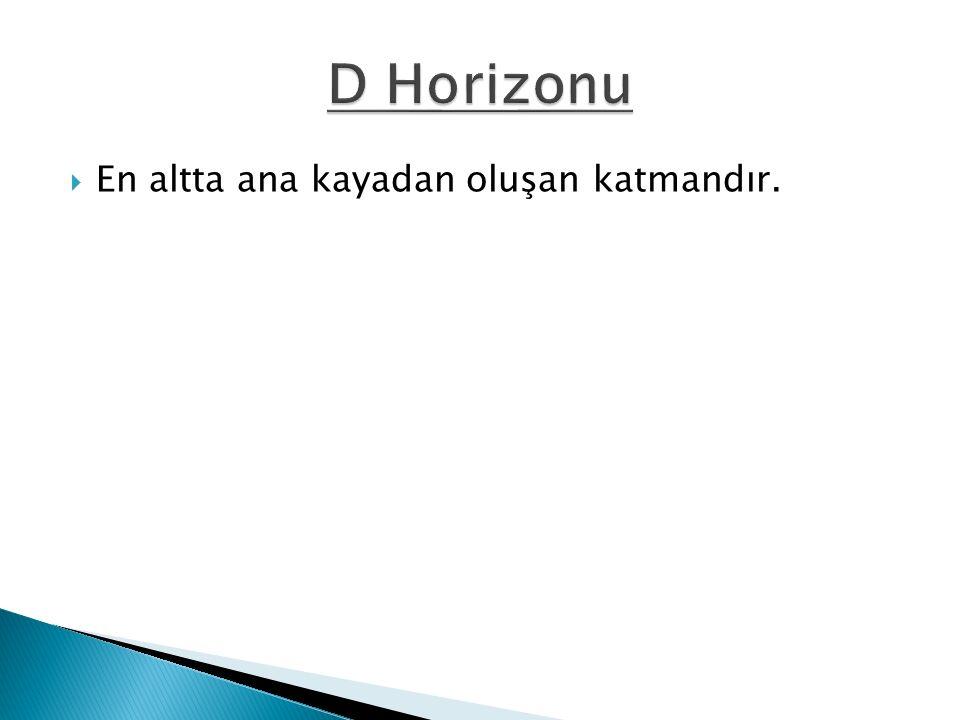 D Horizonu En altta ana kayadan oluşan katmandır.