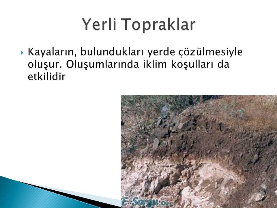 Yerli Topraklar Kayaların, bulundukları yerde çözülmesiyle oluşur.