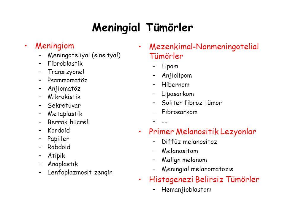 Meningial Tümörler Meningiom Mezenkimal-Nonmeningotelial Tümörler
