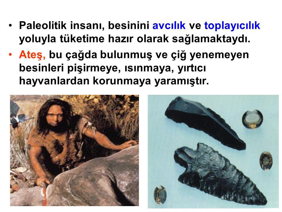 Paleolitik insanı, besinini avcılık ve toplayıcılık yoluyla tüketime hazır olarak sağlamaktaydı.