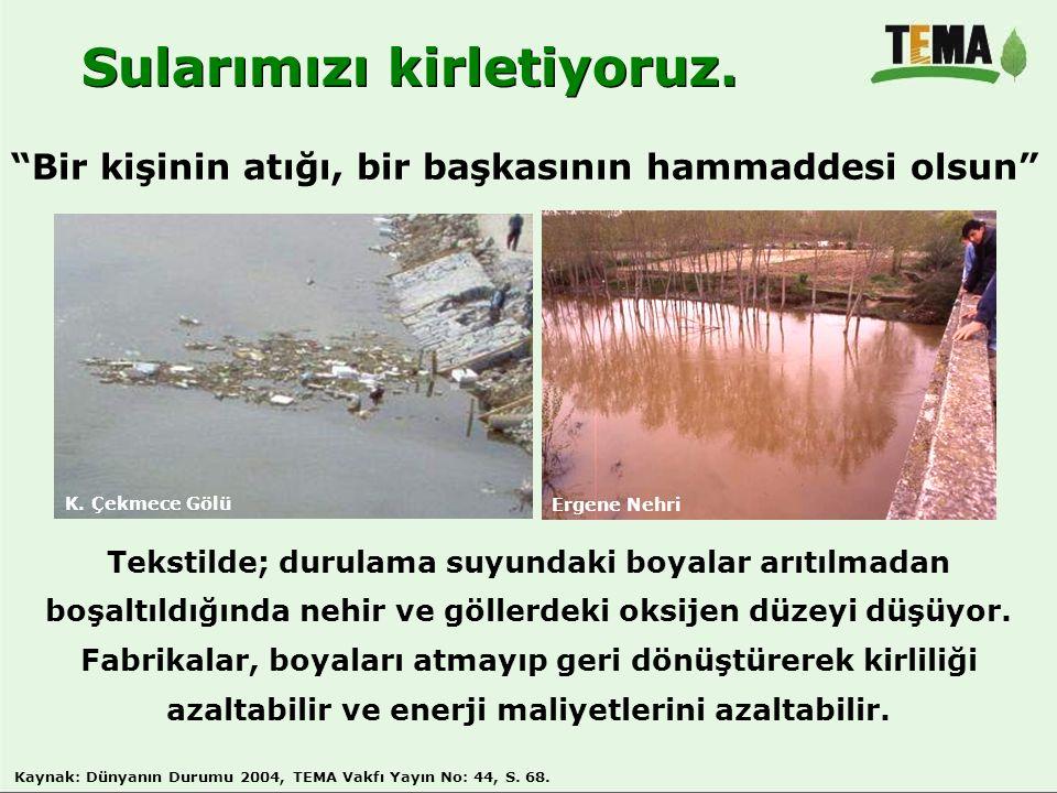 Sularımızı kirletiyoruz.
