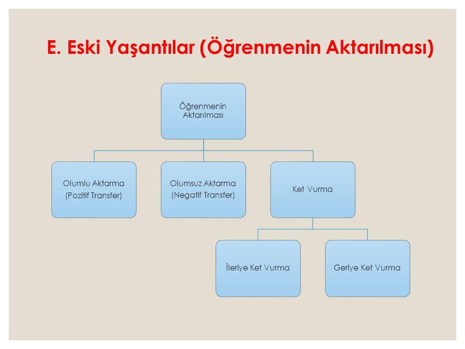 E. Eski Yaşantılar (Öğrenmenin Aktarılması)