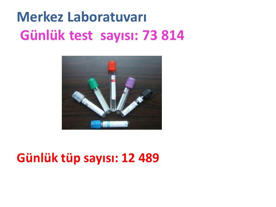 Merkez Laboratuvarı Günlük test sayısı: 73 814