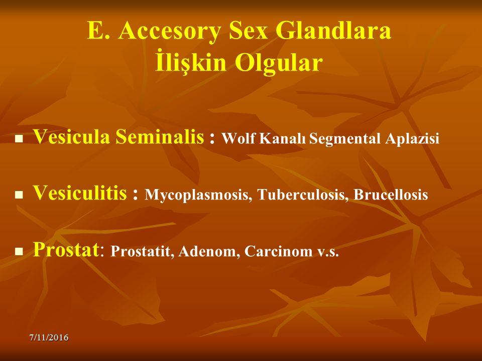 E. Accesory Sex Glandlara İlişkin Olgular