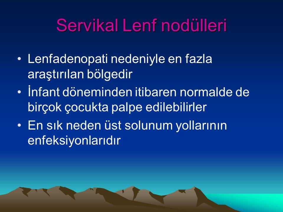 Servikal Lenf nodülleri