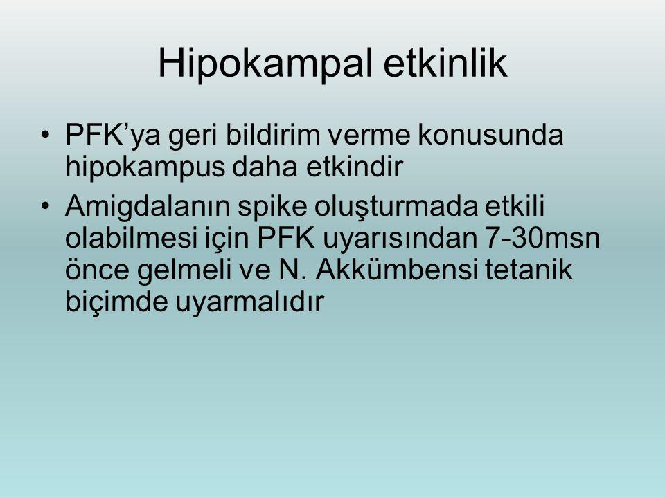 Hipokampal etkinlik PFK'ya geri bildirim verme konusunda hipokampus daha etkindir.