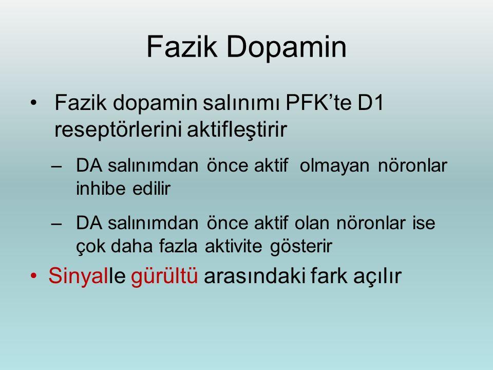 Fazik Dopamin Fazik dopamin salınımı PFK'te D1 reseptörlerini aktifleştirir. DA salınımdan önce aktif olmayan nöronlar inhibe edilir.