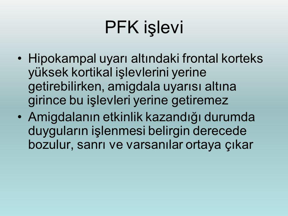 PFK işlevi