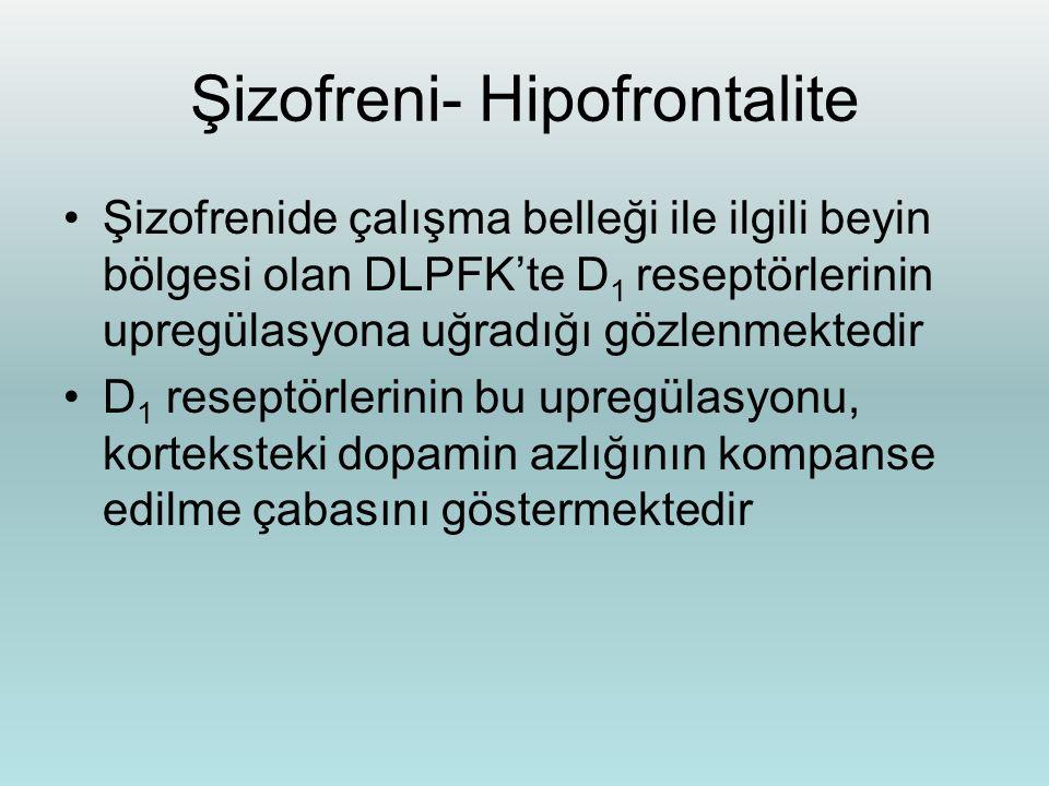 Şizofreni- Hipofrontalite