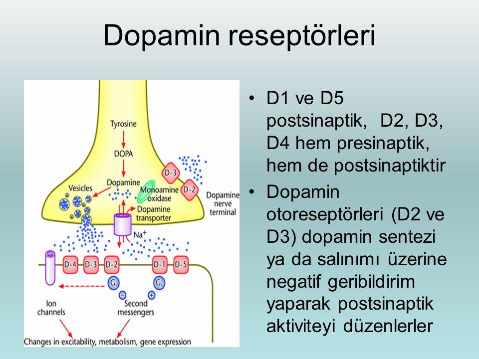 Dopamin reseptörleri D1 ve D5 postsinaptik, D2, D3, D4 hem presinaptik, hem de postsinaptiktir.