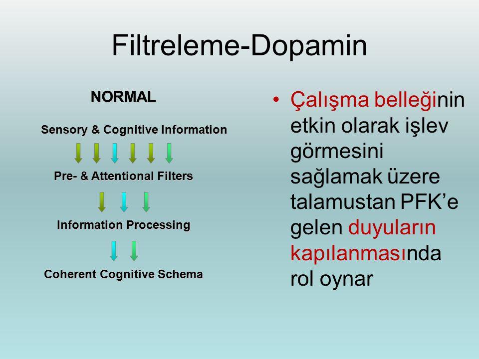 Filtreleme-Dopamin NORMAL. Çalışma belleğinin etkin olarak işlev görmesini sağlamak üzere talamustan PFK'e gelen duyuların kapılanmasında rol oynar.