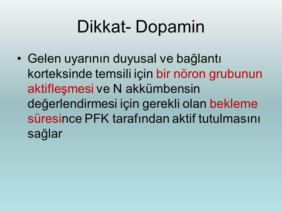 Dikkat- Dopamin