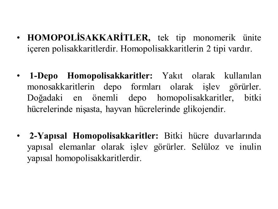 HOMOPOLİSAKKARİTLER, tek tip monomerik ünite içeren polisakkaritlerdir