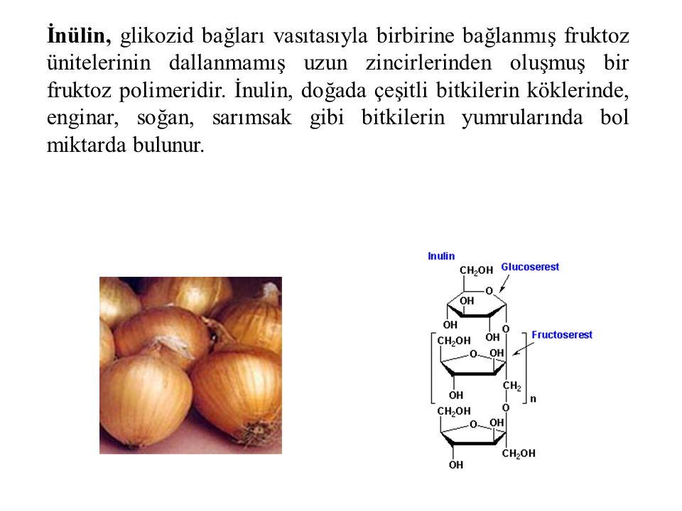 İnülin, glikozid bağları vasıtasıyla birbirine bağlanmış fruktoz ünitelerinin dallanmamış uzun zincirlerinden oluşmuş bir fruktoz polimeridir.