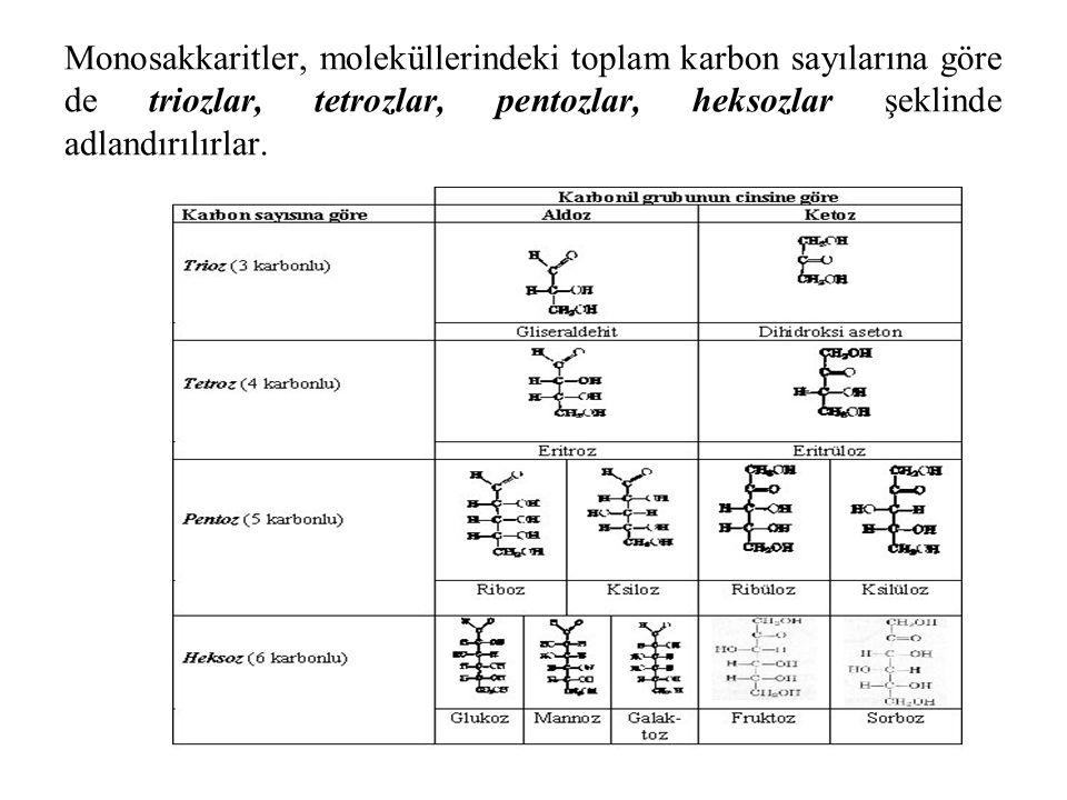 Monosakkaritler, moleküllerindeki toplam karbon sayılarına göre de triozlar, tetrozlar, pentozlar, heksozlar şeklinde adlandırılırlar.