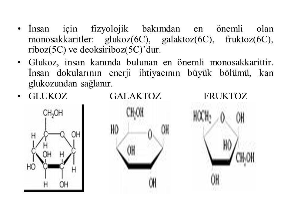 İnsan için fizyolojik bakımdan en önemli olan monosakkaritler: glukoz(6C), galaktoz(6C), fruktoz(6C), riboz(5C) ve deoksiriboz(5C)'dur.