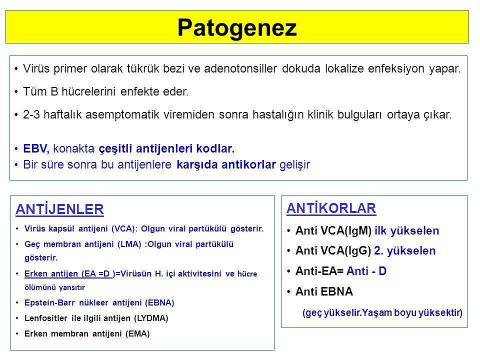 Patogenez ANTİJENLER ANTİKORLAR