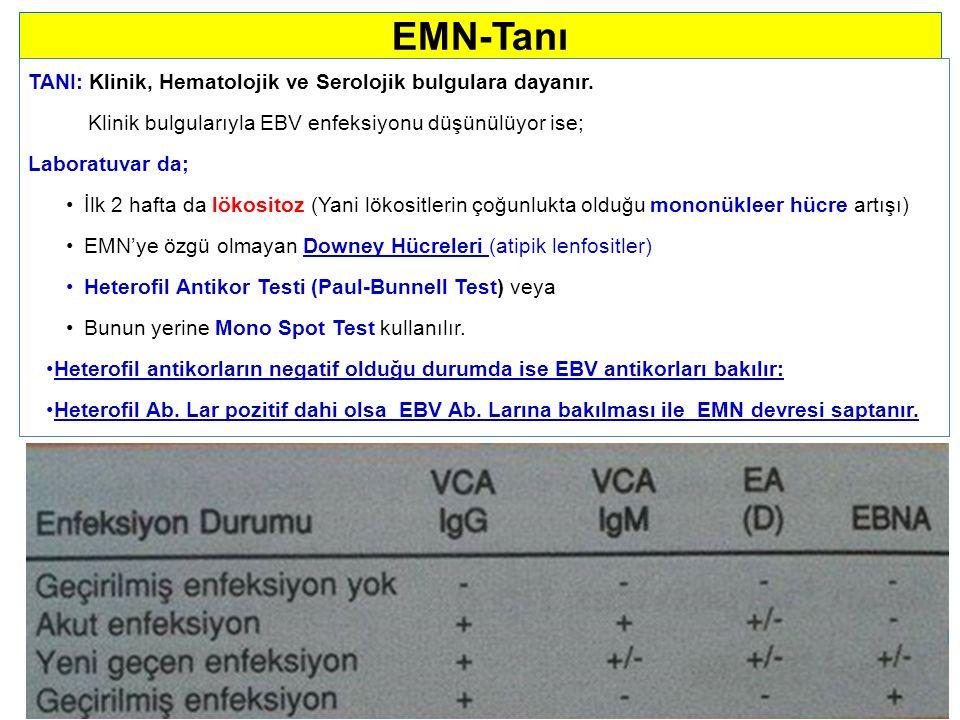 EMN-Tanı TANI: Klinik, Hematolojik ve Serolojik bulgulara dayanır.