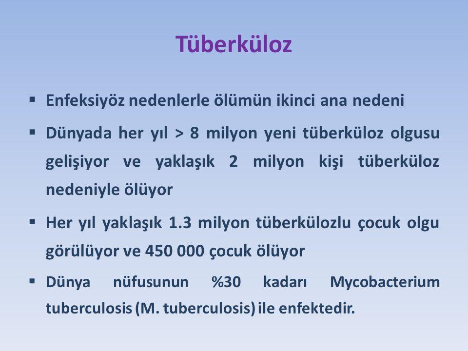 Tüberküloz Enfeksiyöz nedenlerle ölümün ikinci ana nedeni