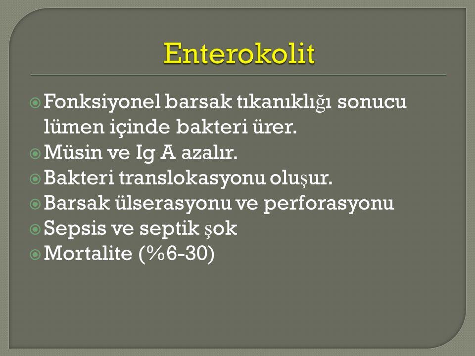 Enterokolit Fonksiyonel barsak tıkanıklığı sonucu lümen içinde bakteri ürer. Müsin ve Ig A azalır.