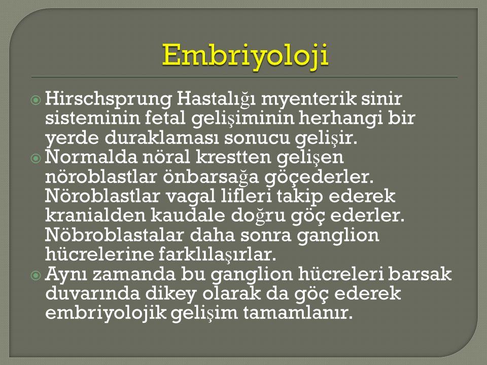 Embriyoloji Hirschsprung Hastalığı myenterik sinir sisteminin fetal gelişiminin herhangi bir yerde duraklaması sonucu gelişir.