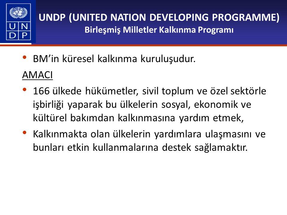 UNDP (UNITED NATION DEVELOPING PROGRAMME) Birleşmiş Milletler Kalkınma Programı
