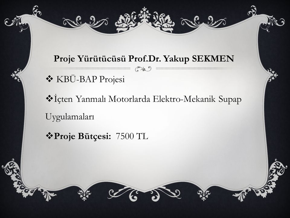 Proje Yürütücüsü Prof.Dr. Yakup SEKMEN