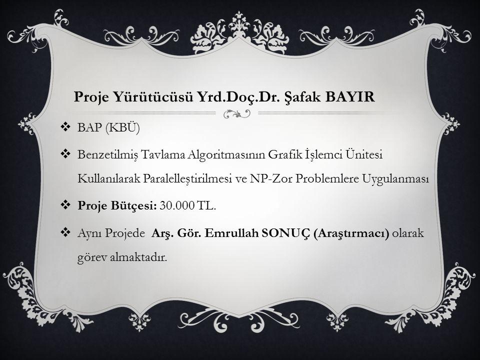 Proje Yürütücüsü Yrd.Doç.Dr. Şafak BAYIR
