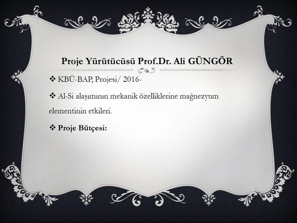 Proje Yürütücüsü Prof.Dr. Ali GÜNGÖR