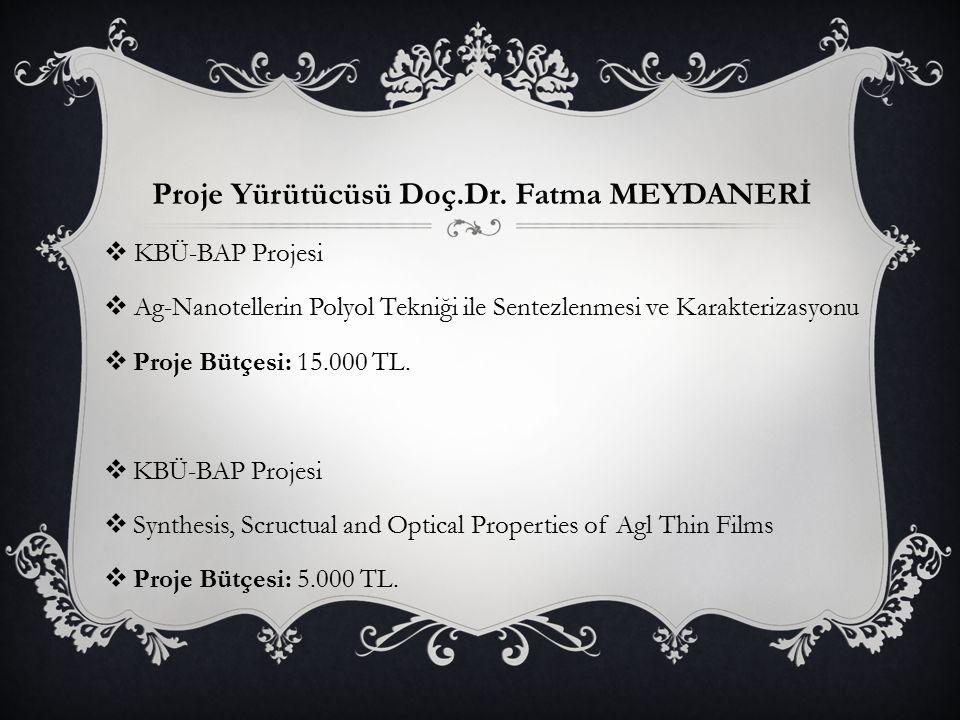 Proje Yürütücüsü Doç.Dr. Fatma MEYDANERİ