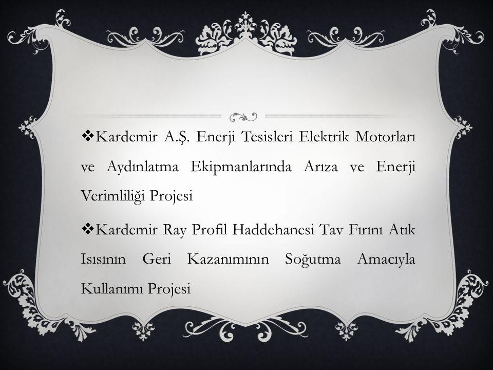 Kardemir A.Ş. Enerji Tesisleri Elektrik Motorları ve Aydınlatma Ekipmanlarında Arıza ve Enerji Verimliliği Projesi