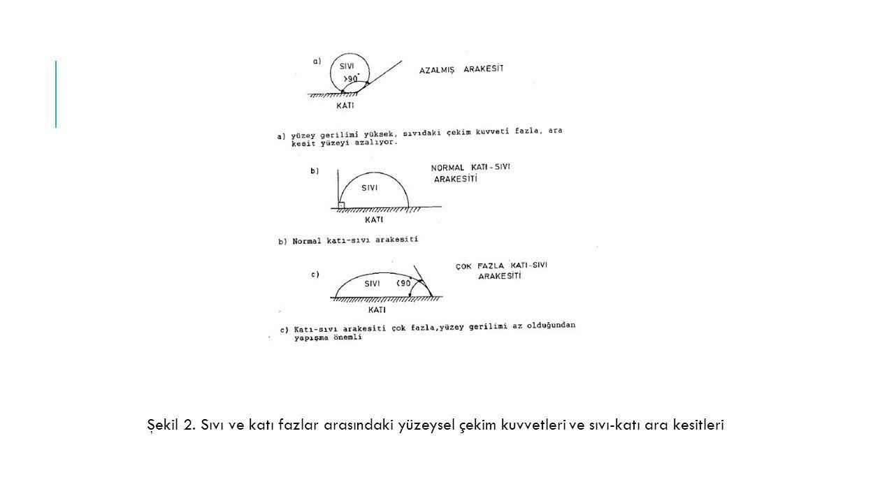 Şekil 2. Sıvı ve katı fazlar arasındaki yüzeysel çekim kuvvetleri ve sıvı-katı ara kesitleri